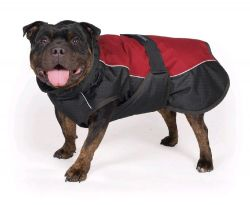 Obleček pro psy Taurus, 60cm