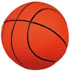Latexový míč BASKETBAL velký, plněný se zvukem 18 cm TRIXIE