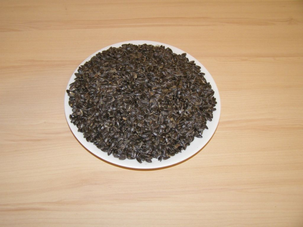 Slunečnice černá 25kg SIERA