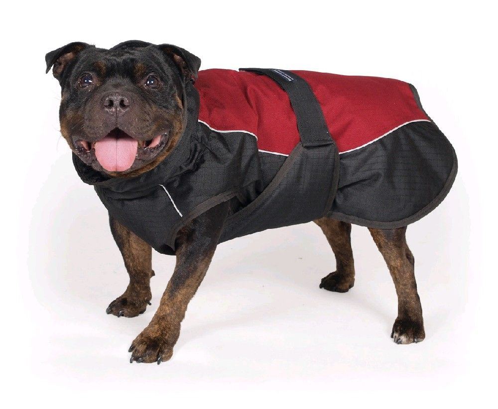 Tommi Obleček pro psy Taurus, 60cm