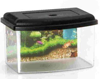 Akvárium s víkem Aquarium 1,3 lt. 22 x 16 x 14cm SIERA - Plast