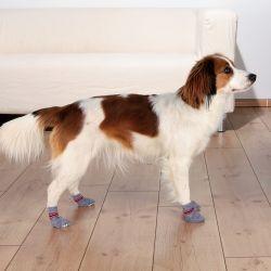 Protiskluzové šedé ponožky, 2 ks pro psy S-M (border kólie)