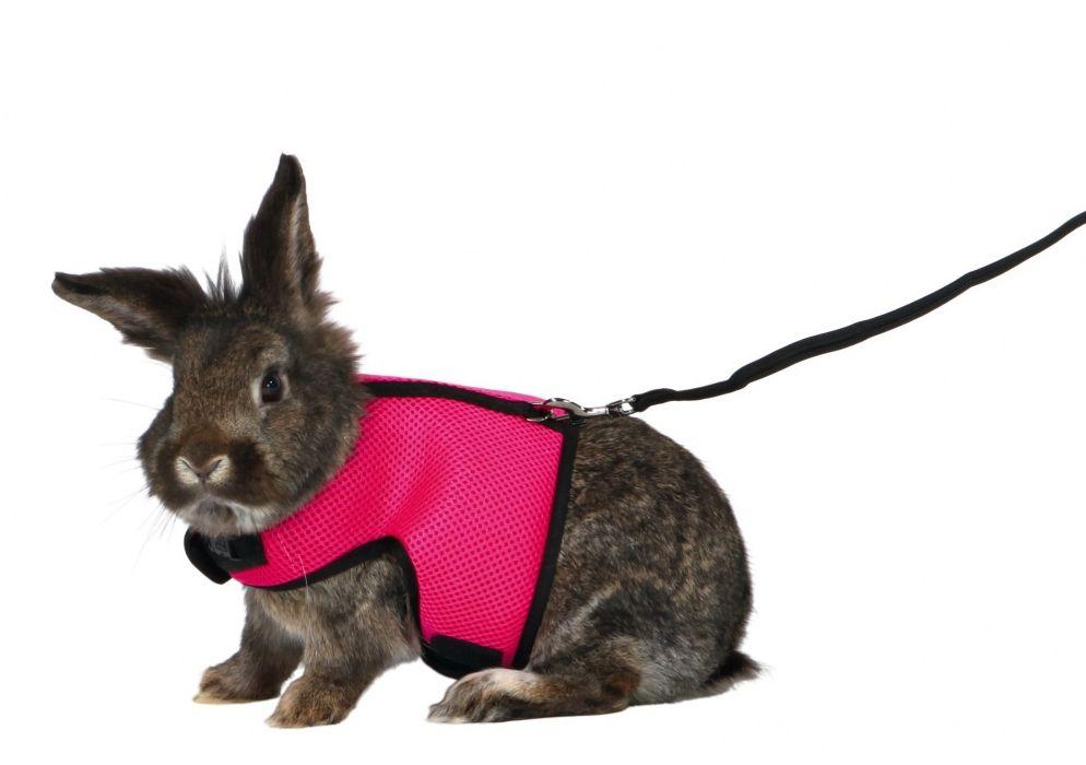 Postroj VESTA s vodítkem pro velkého králíka 25-40cm/1,20m Trixie