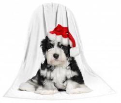 Deka TEXSTAR mikrovlákno 280g 150 x 200 cm,  - kotě a štěně vánoční