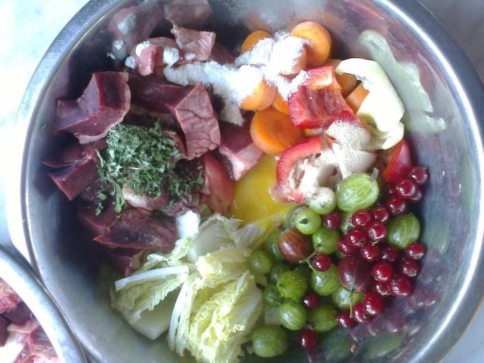 Dávkování a složení krmiva